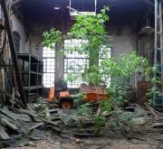 Nature v an engine shed